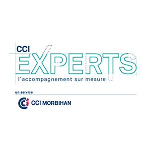 CCI Experts